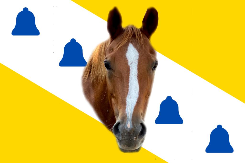 Belle Racing Flag