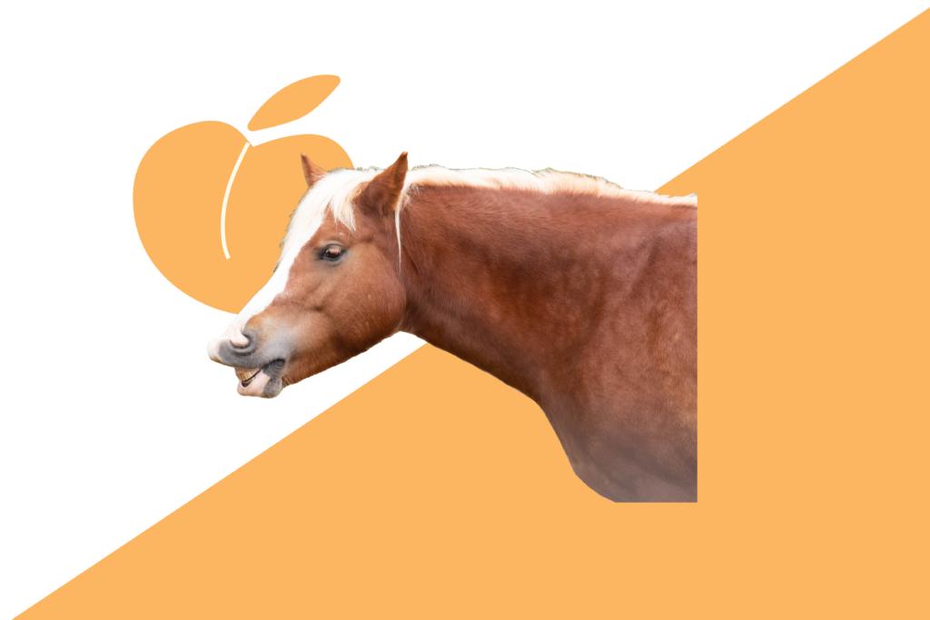 Peach Racing Flag