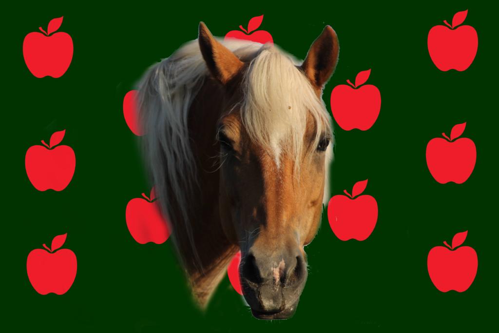Apple Race Flag